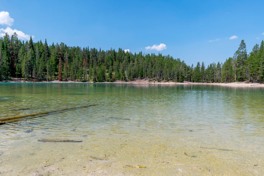 clear lake in yellowstone national park